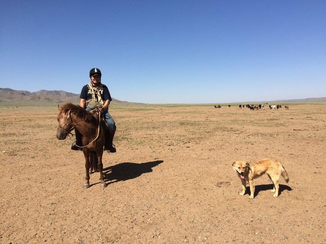 mongolia-horse-rider