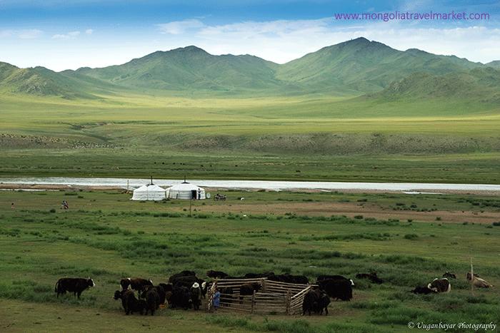 Typical nomadic lifestyle