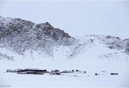mongolian winter
