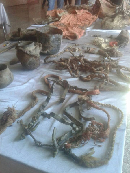 findings from burial in Mongolia