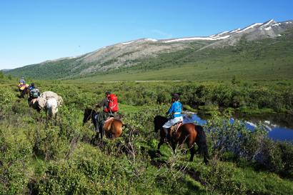 Taiga, mongolian horse tour, horse iriding in taiga