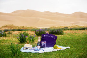 luxury tour, mongolian premium tours